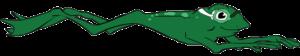 Flambeau Area Swim Team