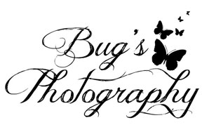 bugsPhotography